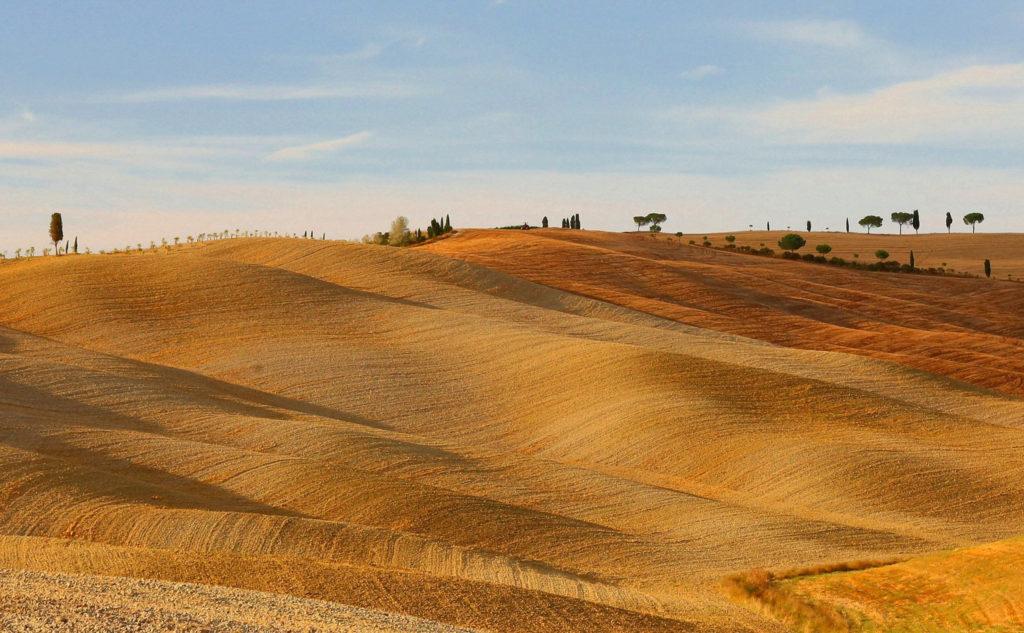 Sa Mu Landscape